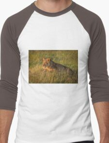 Lion lies staring in grass at dusk Men's Baseball ¾ T-Shirt