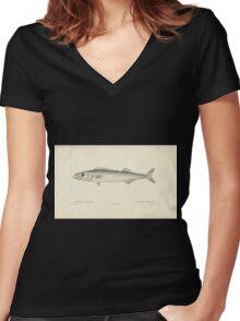 Natural History Fish Histoire naturelle des poissons Georges V1 V2 Cuvier 1849 027 Women's Fitted V-Neck T-Shirt