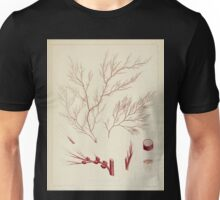 The botany of the Antarctic voyage of H M  discovery ships Erebus and Terror in the Years 1839 1843 Joseph Dalton Hooker V1 161 Unisex T-Shirt