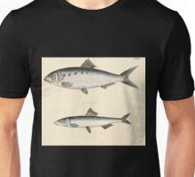 Naturgeschichte in Bildern mit erläuterndem Text E Strack 1820 Lief 4 Fish 129 Unisex T-Shirt