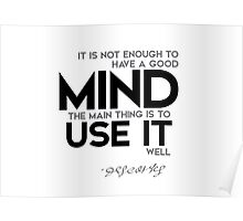mind: use it well - descartes Poster