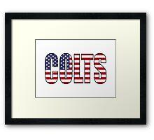Colts Framed Print
