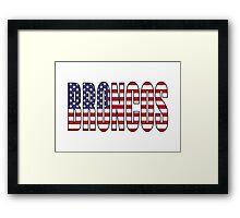 Broncos Framed Print
