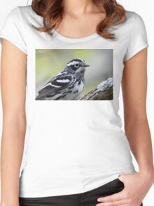 Black-and-white Warbler Women's Fitted Scoop T-Shirt
