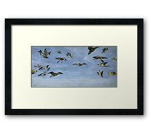 An owl and a multitude of birds, SNYDERS FRANS Framed Print