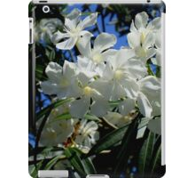 Budding Blossoms iPad Case/Skin