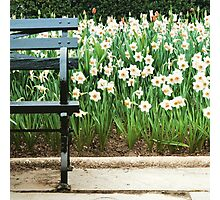 Spring in New York Photographic Print