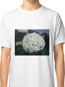 Cottonball Hydrangea Classic T-Shirt