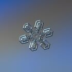 Snowflake photo - High voltage by Alexey Kljatov