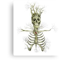 Death and Rebirth Canvas Print