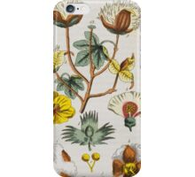 BOTANY - [Wilhelm, Gottlieb Tobias]. Conversations from the natural history of the plant kingdom. iPhone Case/Skin