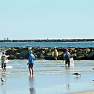 Casting Their Nets For Bait Fish - Island Beach State Park - New Jersey by MotherNature