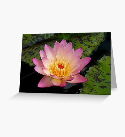 Pink Princess Greeting Card