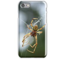 Orb Weaver Spider in Tangled Web iPhone Case/Skin
