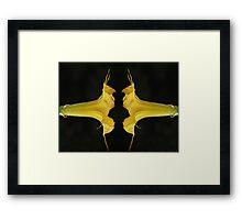 Angel Trumpet Mirror Image Framed Print