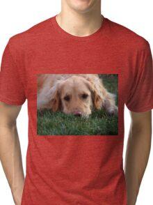Gracie Pouts Tri-blend T-Shirt