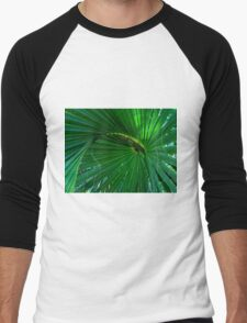 Playful Palm Men's Baseball ¾ T-Shirt