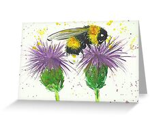 Bumble bee sitting a two thistles Greeting Card