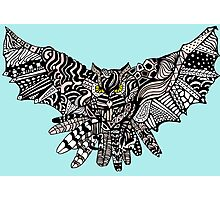 Night Owl in Color Photographic Print