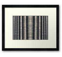 Columns Mirrored Framed Print