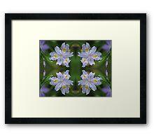Iris Multiplied Framed Print
