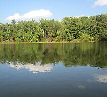 Lake Ridge Reflection 2 by Respite Artwork by Respite-Artwork
