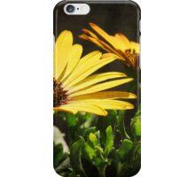 Flower Power 3 iPhone Case/Skin