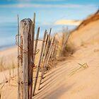 Coastline by capecodart