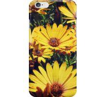 Flower Power 4 iPhone Case/Skin