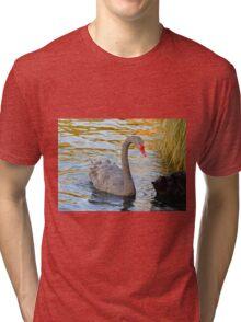 Swan Tri-blend T-Shirt