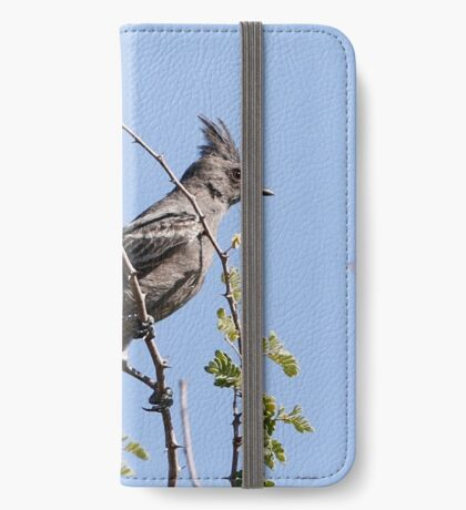 Phainopepla iPhone Wallet/Case/Skin
