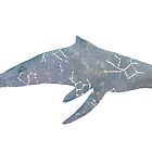 Whale Constellation by pokegirl93