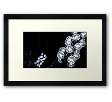 Glass Bubbles Framed Print