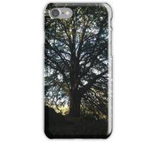 Tree in Ireland iPhone Case/Skin