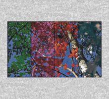 Four Seasons One Piece - Short Sleeve