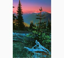 VIEW,OBSTRUCTION POINT Unisex T-Shirt
