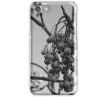 Seed Cluster iPhone Case/Skin