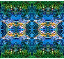 Faces in the Forest Photographic Print