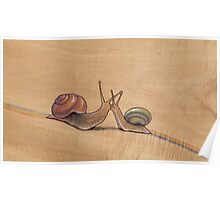 Snail Kiss (red/green) Poster