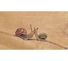 Snail Kiss (red/green) Photographic Print