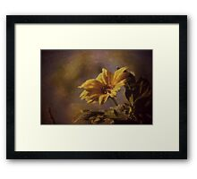 Back to the days of ago Framed Print