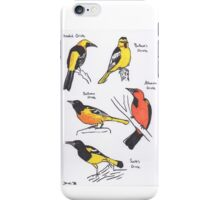 North American Orioles iPhone Case/Skin