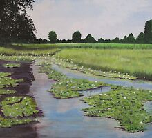 Wetlands by Hal Newhouser