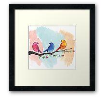 Watercolor birds Framed Print