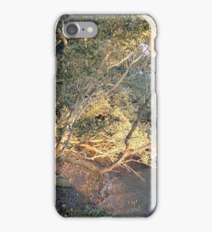 Last Rays iPhone Case/Skin
