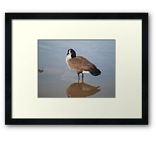 Goose Reflection by Respite Artwork Framed Print