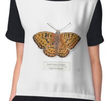 Dark Green Fritillary on White Chiffon Top
