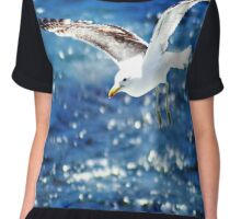 Gliding Seagull over ocean Chiffon Top