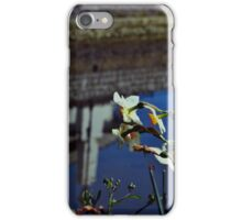 Flower with Reflection Background! iPhone Case/Skin