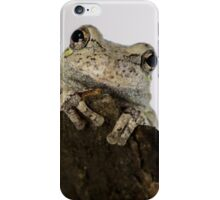 Adorable Smiling Tree Frog iPhone Case/Skin